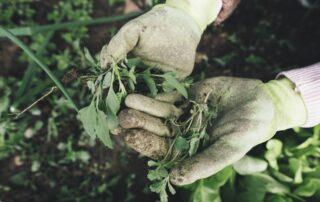 sicurezza sul lavoro in agricoltura