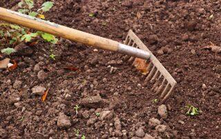 lavori da fare nel mese di giugno nell'orto